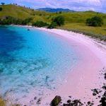 コモド島の行き方は?おすすめの絶景と穴場が!世界遺産、ツアーや宿泊も